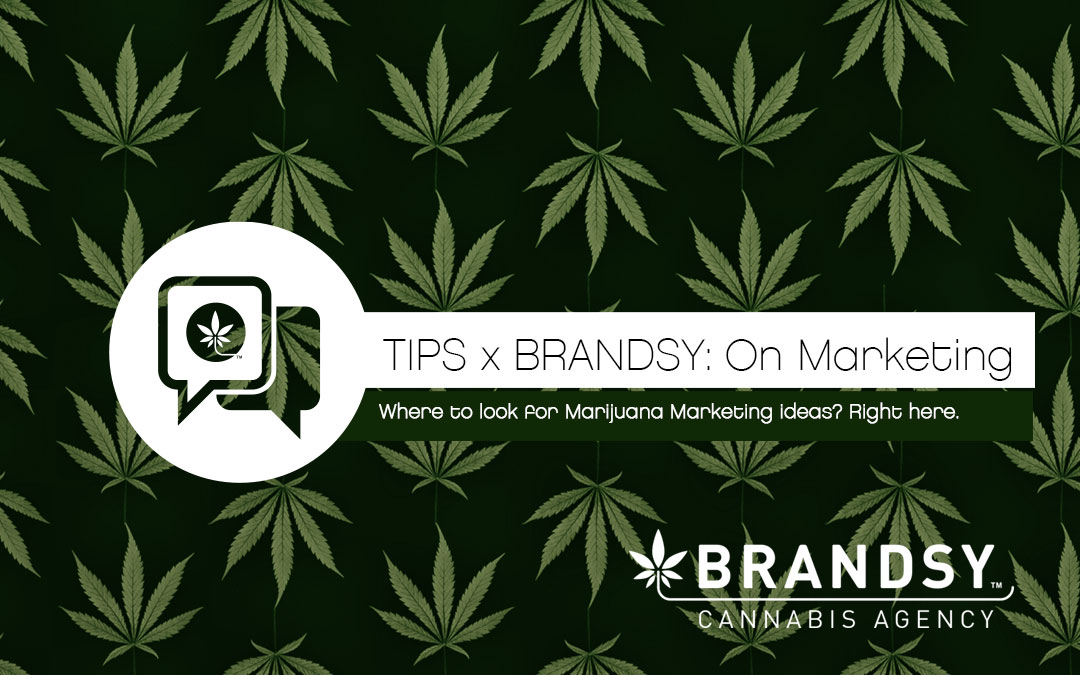Where to look for Marijuana Marketing ideas?  Right here.